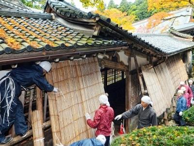 大本山永平寺で雲水が雪囲いに精 冬将軍の訪れに備え
