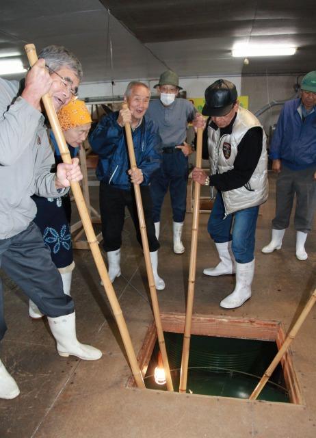酒造りのため、木の棒を使って床下のタンクをかき回す住民たち=20日、福井県小浜市木崎の酒造会社「わかさ冨士」