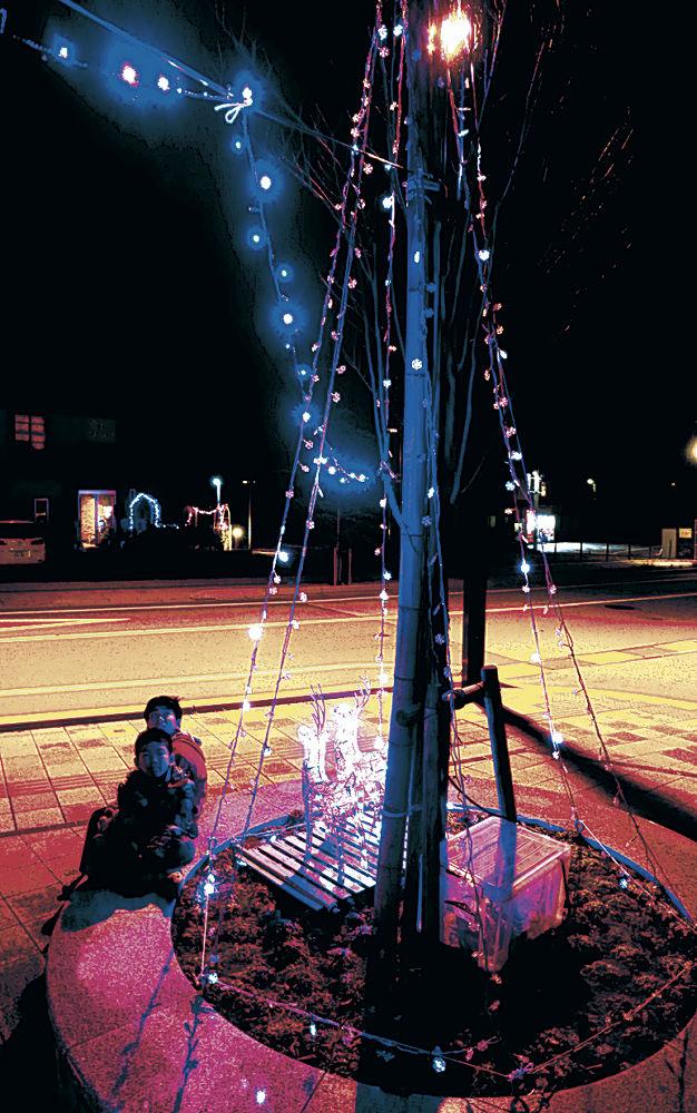 ライトアップされた樹木に見入る子ども=かほく市宇野気