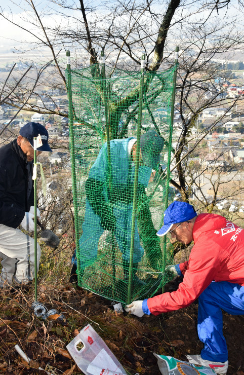 斜面に苗を植え、シカよけの防護ネットで囲う参加者