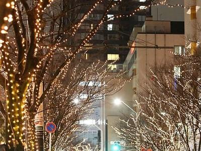 満天の光心温め 新潟・中央区