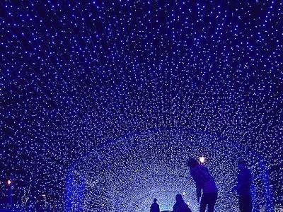 敦賀港イルミネーション「ミライエ」 未来ともす光の造形