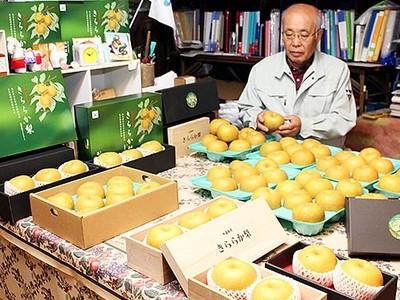 冬の「きららか梨」好評 小杉・藤岡農園、贈答用の発送開始