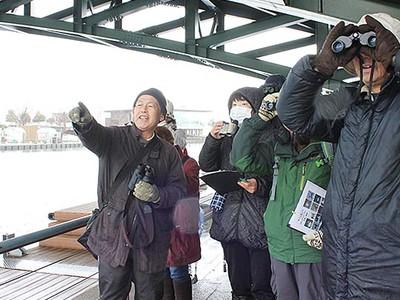 冬の水鳥 生態学ぶ 富岩運河環水公園、今季初の観察会に20人