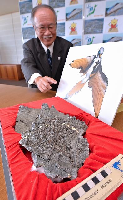 福井勝山市で見つかった原始鳥類の全身骨格化石。写真奥は、化石について説明する県立恐竜博物館の東特別館長=5日、県庁
