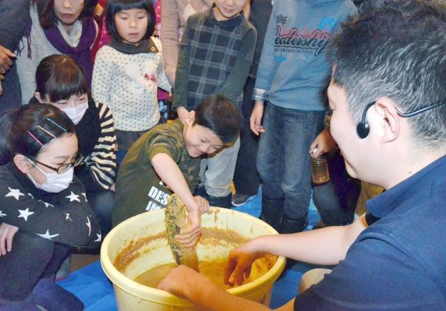 塩水を張ったぬか樽からへしこを取り出す児童=12日、福井県坂井市春江町の県児童科学館