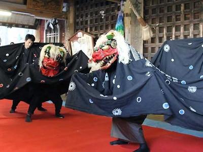 伝統の羽広獅子舞、雌雄呼吸ぴたり 伊那で五穀豊穣祈る