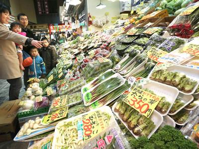 春近し、山菜ずらり 金沢市の近江町市場