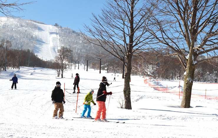 今月5日、奥志賀高原スキー場でスキーを楽しむ人たち。県内スキー場の年末年始の入り込みは3年ぶりに減少した=山ノ内町