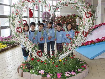 バレンタイン華やかに、県花総合センター 愛に関連の花展示