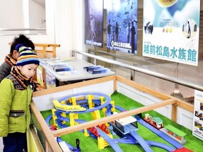 北陸新幹線で水族館来て 北陸3県で割引キャンペーン
