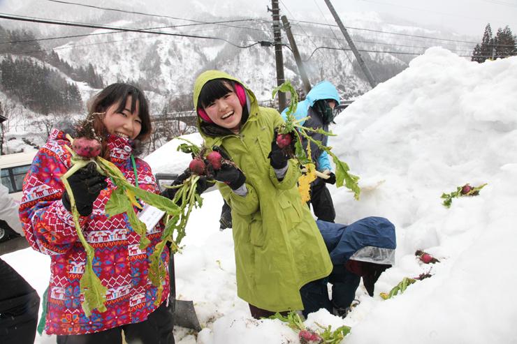 雪の中から赤カブを掘り出し、笑顔を見せるツアー参加者=南砺市楮