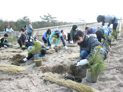 植樹祭へ「地域リレー」 安宅小児童がクロマツ植える