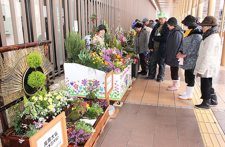 オリジナルのコンテナガーデンを飾る市民=新高岡駅南口
