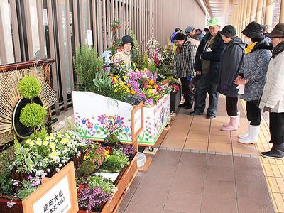 新幹線客、花で出迎え 新高岡駅