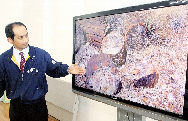 珪化木を説明する映像を解説する寺田和雄主任研究員=24日、福井県勝山市の県立恐竜博物館