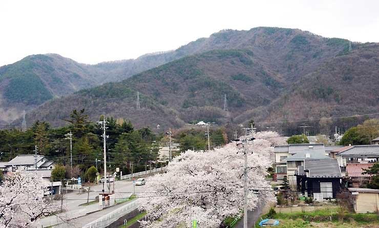 スタート地点となる大星神社近くから見た太郎山