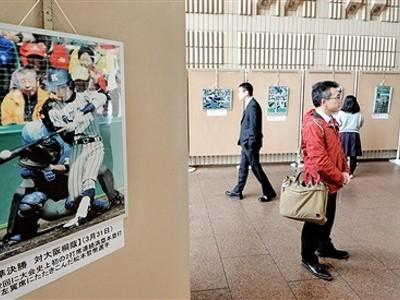 激闘 写真で振り返る 県庁ホールで19点展示