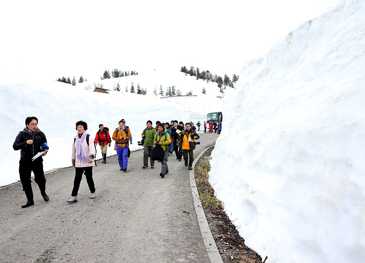 雪の壁の間を走る高原バス=弥陀ケ原