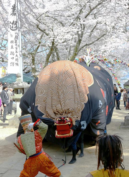 高森町大島山の瑠璃寺の境内で、桜の下で奉納された獅子舞