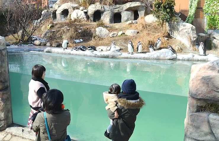 2014年度に過去最多の入園者数を記録した飯田市立動物園=今年1月