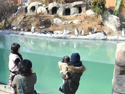 飯田市立動物園13万人超 入園者数60年ぶりに過去最多