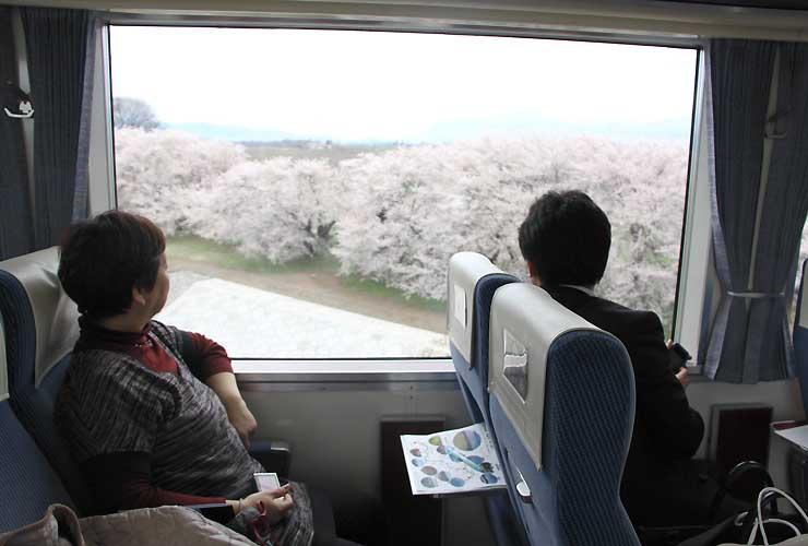 桜の花など景色がゆっくり楽しめる「特急ゆけむり〜のんびり号〜」=須坂市村山