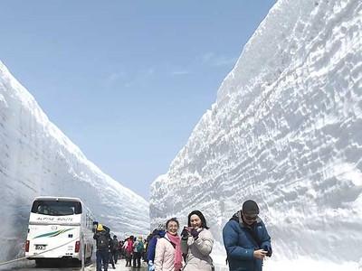 19メートルの雪壁、別世界 立山黒部アルペンルート開通