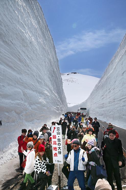 立山・黒部アルペンルートが全線開通し、「雪の大谷」を散策する大勢の観光客