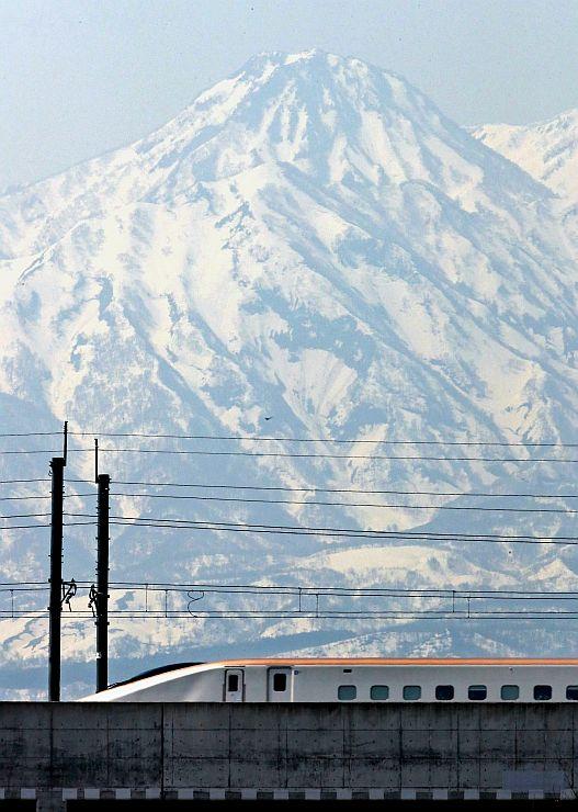 はっきりと浮かび上がった妙高山の雪形「跳ね馬」。手前を北陸新幹線が疾走する(イラスト参照)=16日、上越市板倉区
