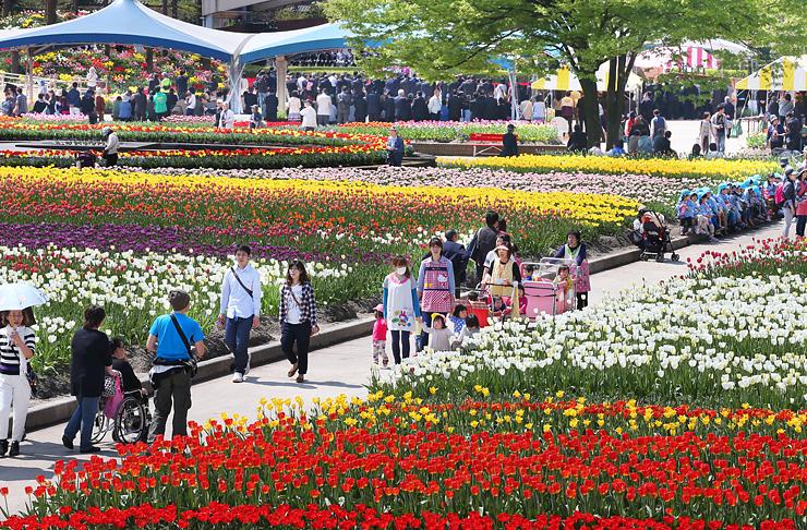 色とりどりの花が咲くチューリップフェア会場=砺波チューリップ公園