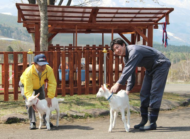 黒姫童話館前に新設されたヤギ園。3月に生まれた子ヤギは6月末までに放牧する予定だ