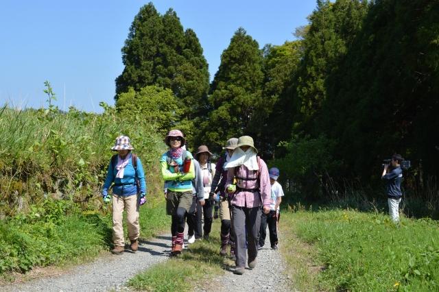 初夏を思わせる陽気の中、山頂を目指す登山者=29日、福井県若狭町倉見