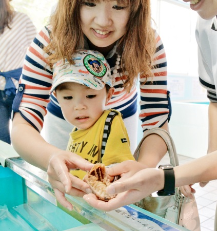 オオグソクムシに恐る恐る触る子ども=1日、福井県坂井市三国町の越前松島水族館