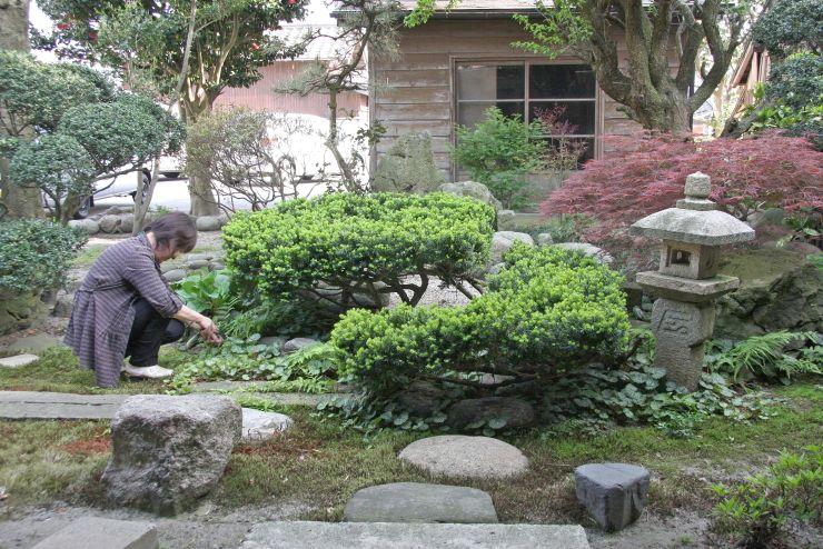 新イベント「春の庭百景めぐり」に参加している村上市コミュニティデイホームの裏庭=1日、同市鍛冶町