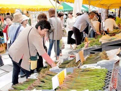 奥越の山菜に人波 「フードピア」大野で開幕