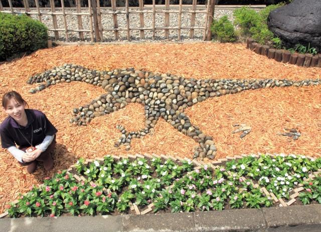 恐竜をデザインした石の造形がお目見えした花壇=福井県勝山市の勝山温泉センター「水芭蕉」