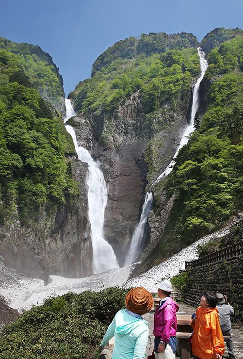 新緑の中、ごう音を立てて流れ落ちる称名滝(左)とハンノキ滝。滝つぼには虹が現れた=立山町芦峅寺