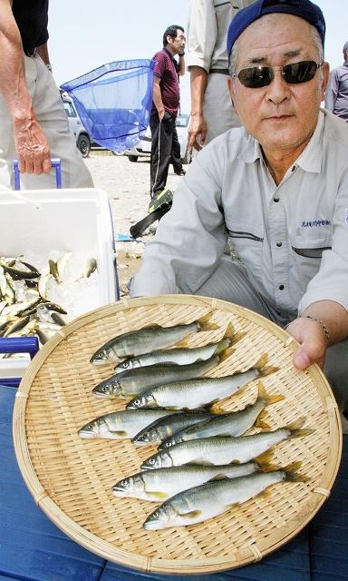 試し釣りで釣れたアユ=1日、福井県永平寺町松岡上合月