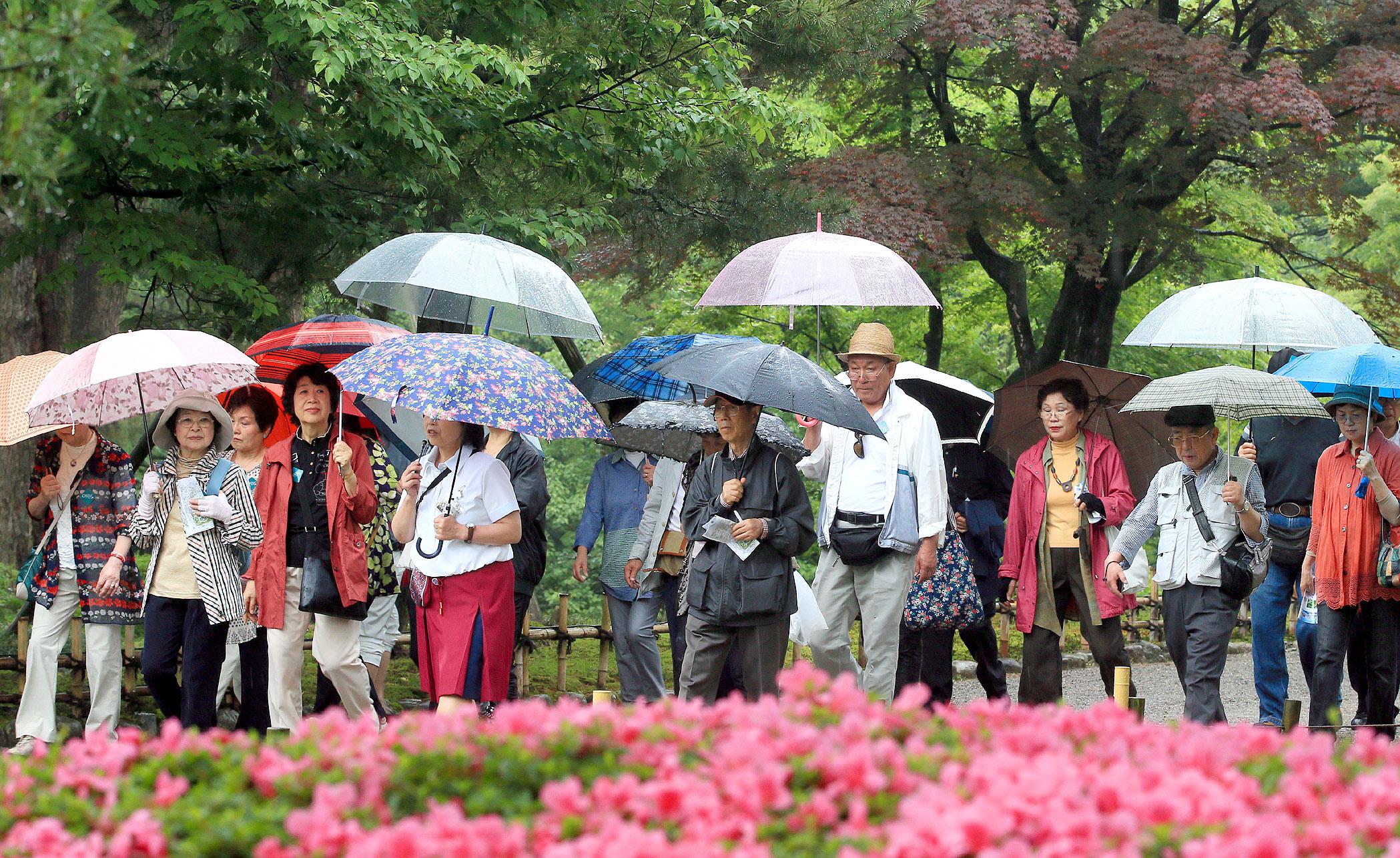 雨の中園内を散策する観光客=3日午前11時半、兼六園