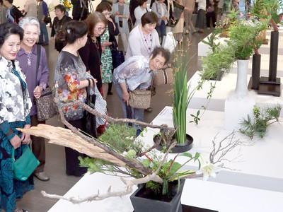 節目を刻む花の祭典 第20回記念総合花展金沢展が開幕
