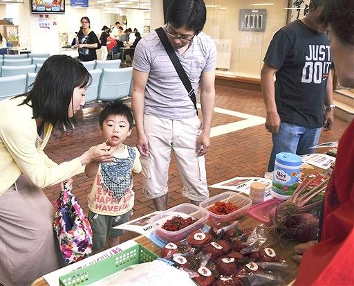 アカカンバを試食する親子連れ=9日、敦賀市役所