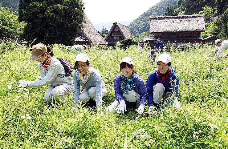 2年前に造成した集落そばの茅場で下草を刈る中日本高速道路の社員ら=南砺市菅沼