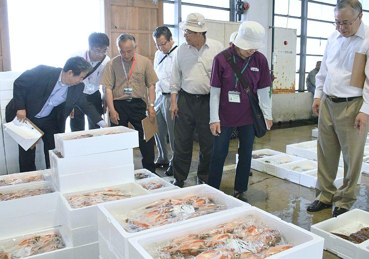 テストツアーで能生漁港の競り場を見学する参加者=糸魚川市