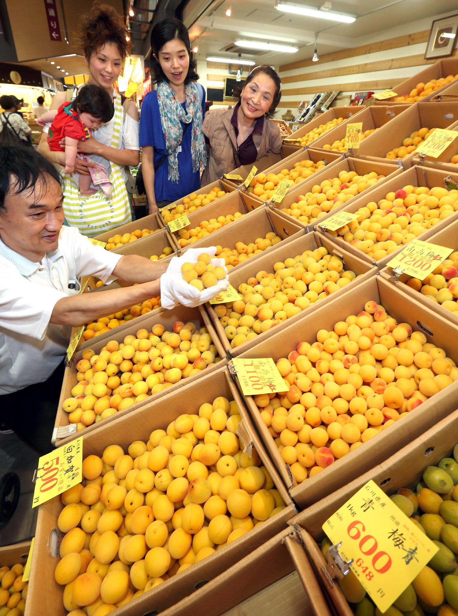 店頭にずらりと並んだ梅の実=23日午前11時、金沢市の近江町市場