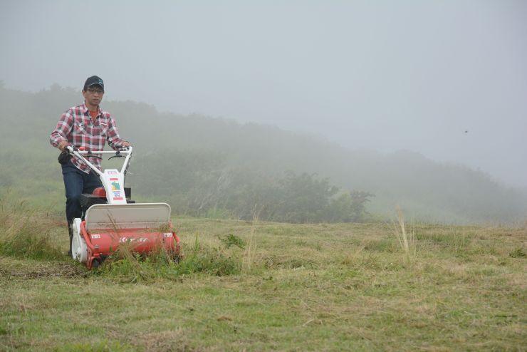 ドンデン山の景観を守ろうと、草刈りに汗を流す参加者=5日、佐渡市