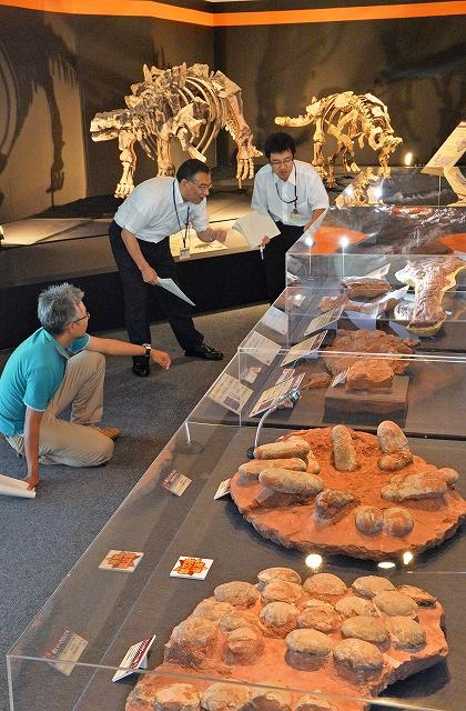 特別展「南アジアの恐竜時代」の開幕を控え、展示物の最終確認をする担当者=9日、福井県勝山市の県立恐竜博物館