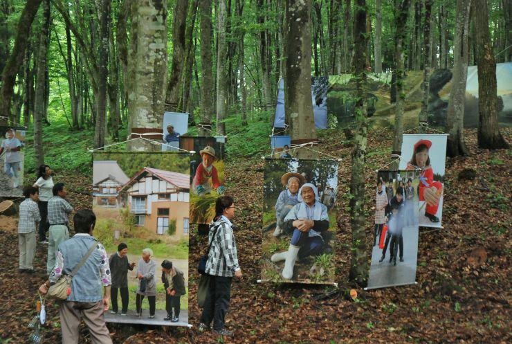 美人林に展示された「写真の村」による作品。写真がシートにプリントしてある=十日町市松之山松口