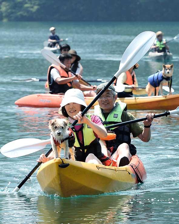 愛犬とカヤック体験。犬も救命胴衣を着け、飼い主と一緒に湖上散歩を楽しんだ=2日、大町市平の青木湖