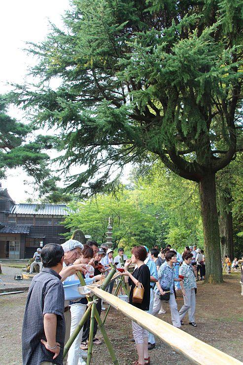 飯塚邸の庭園で流しそうめんを楽しむ人たち=柏崎市
